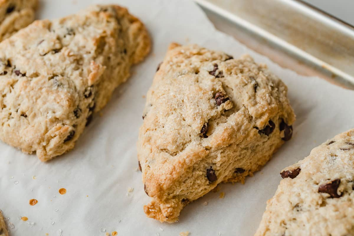 Chocolate Chip Sourdough Scone on a baking sheet.
